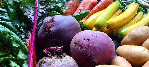 Issbewusst_Gemüse_bunt_2.JPG