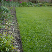 Trimmed lawn edge