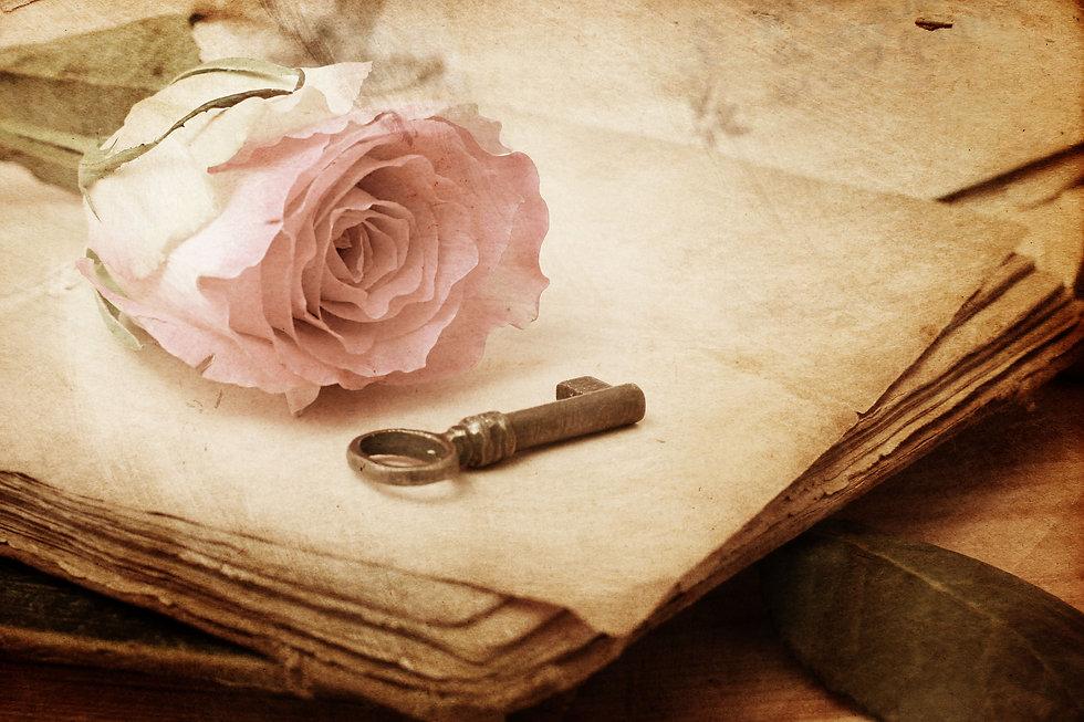 pink rose on an old book (vintage) .jpg