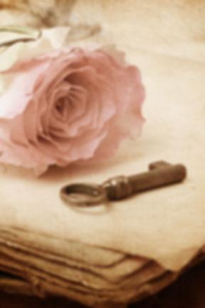 pink rose on an old book (vintage) _edit