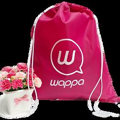Mochila rosa da wappa.png