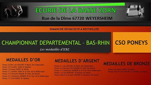 CHAMPIONNAT_DEPARTEMENTAL_–_BAS-RHIN.jpg