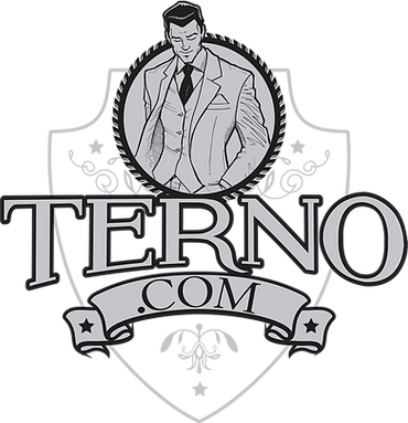 logo_ternopontocomCINZAPNG.png