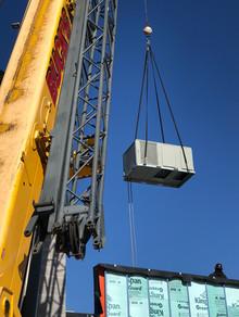 crane2.jpeg