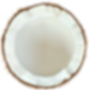 Coconut_PNG_Clip_Art_Image.png