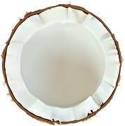 Coconut_PNG_Clip_Art_Image.png