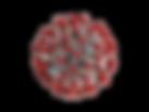 sars-cov-19-768x576_edited.png