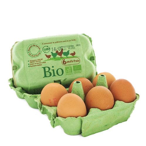 Huevos (1 docena)