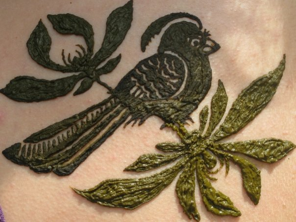 bird henna