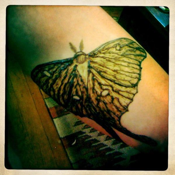 luna moth henna