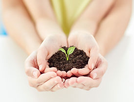 Clinic treatments to help people grow