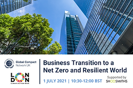 Global Compact Network UK: Business Transition to a Net Zero and Resilient World
