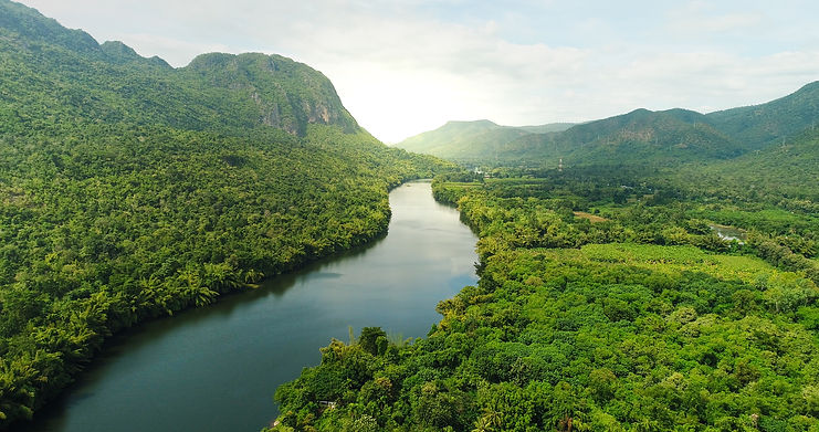 shutterstock_scenery of river in southeast Asia tropical green forest.jpg