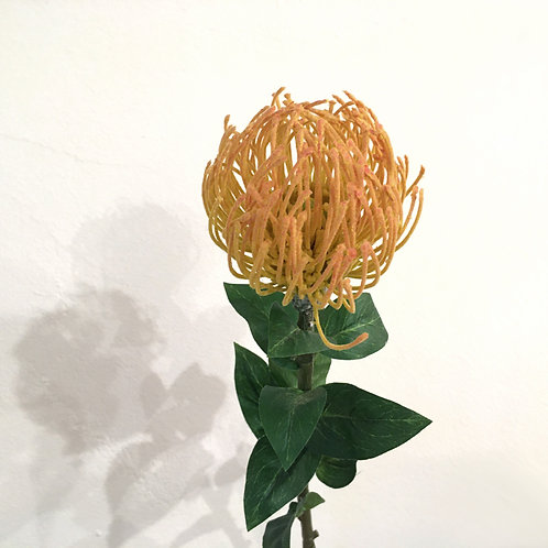 Leucospermum gelb-orange (74 cm)