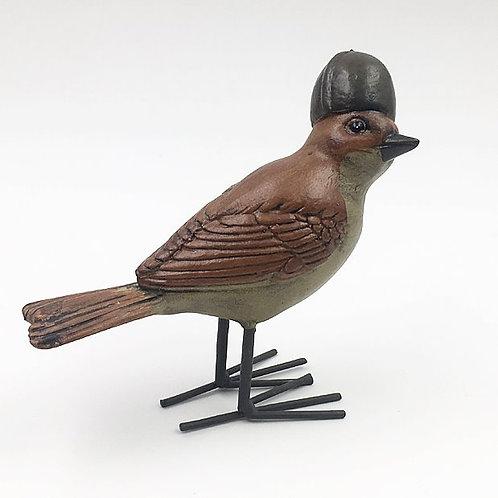 Vogel mit Nusshelm