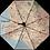 Thumbnail: Stadtschirm rainmap® - Rapperswil-Jona