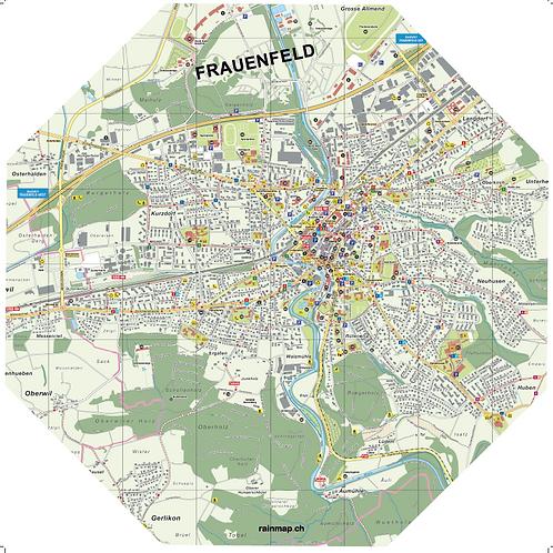 Stadtschirm rainmap® - Frauenfeld