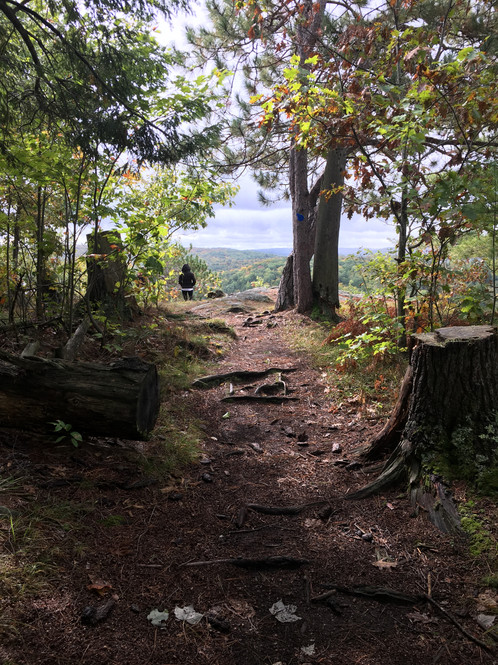 Trail to James Cooper Lookout
