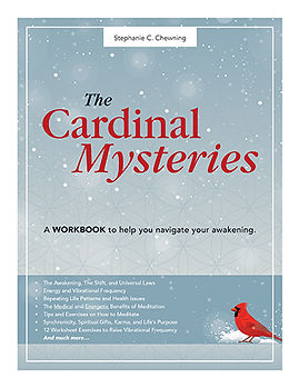 Cover for The Cardinal Mysteries Workbook