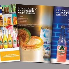 Novamex/Jarritos recipe booklet design