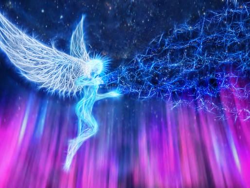 TerraNova Avatari-Gule a Krídla,Vzostup Hviezdnymi Bránami Vedomia, Archy Novej Zeme,Vývoj 2021-2025