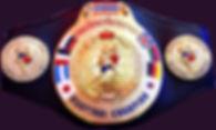 belt 001.jpg