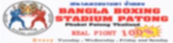 Bangla 1200 x 300.jpg