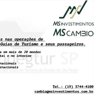Câmbio MS Investimentos