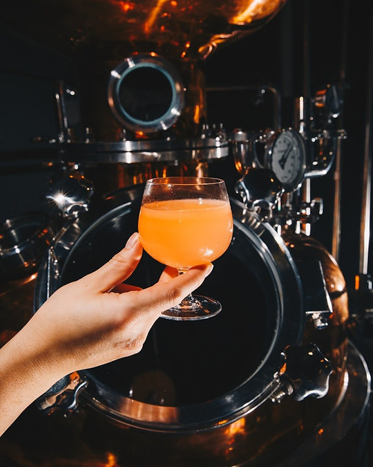 A cocktail at a craft gin distillery