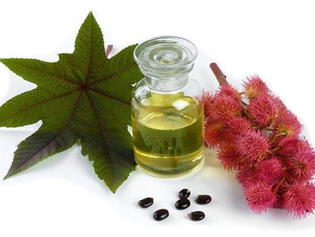 CASTOR OIL FOR OVERALL HEALTH AND PERSONAL CARE