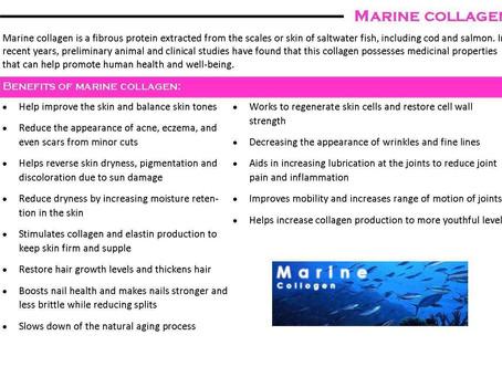 Marine Collagen Supplements