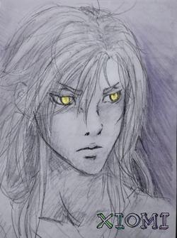 Concept Wolfgar