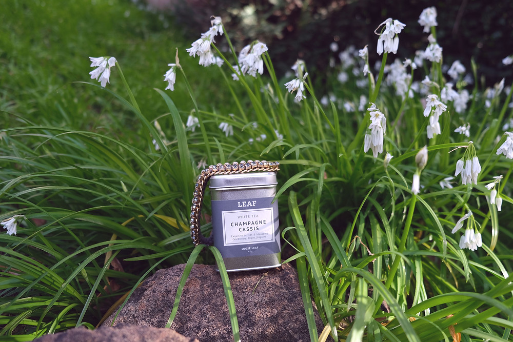 A tin of LEAF's White Tea Champagne Cassis placed on a rock between snowdrops