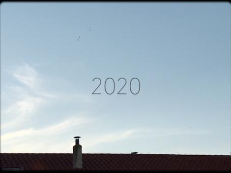 1989-2020: un diario audiovisual