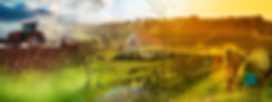 cover_site-rural.jpg