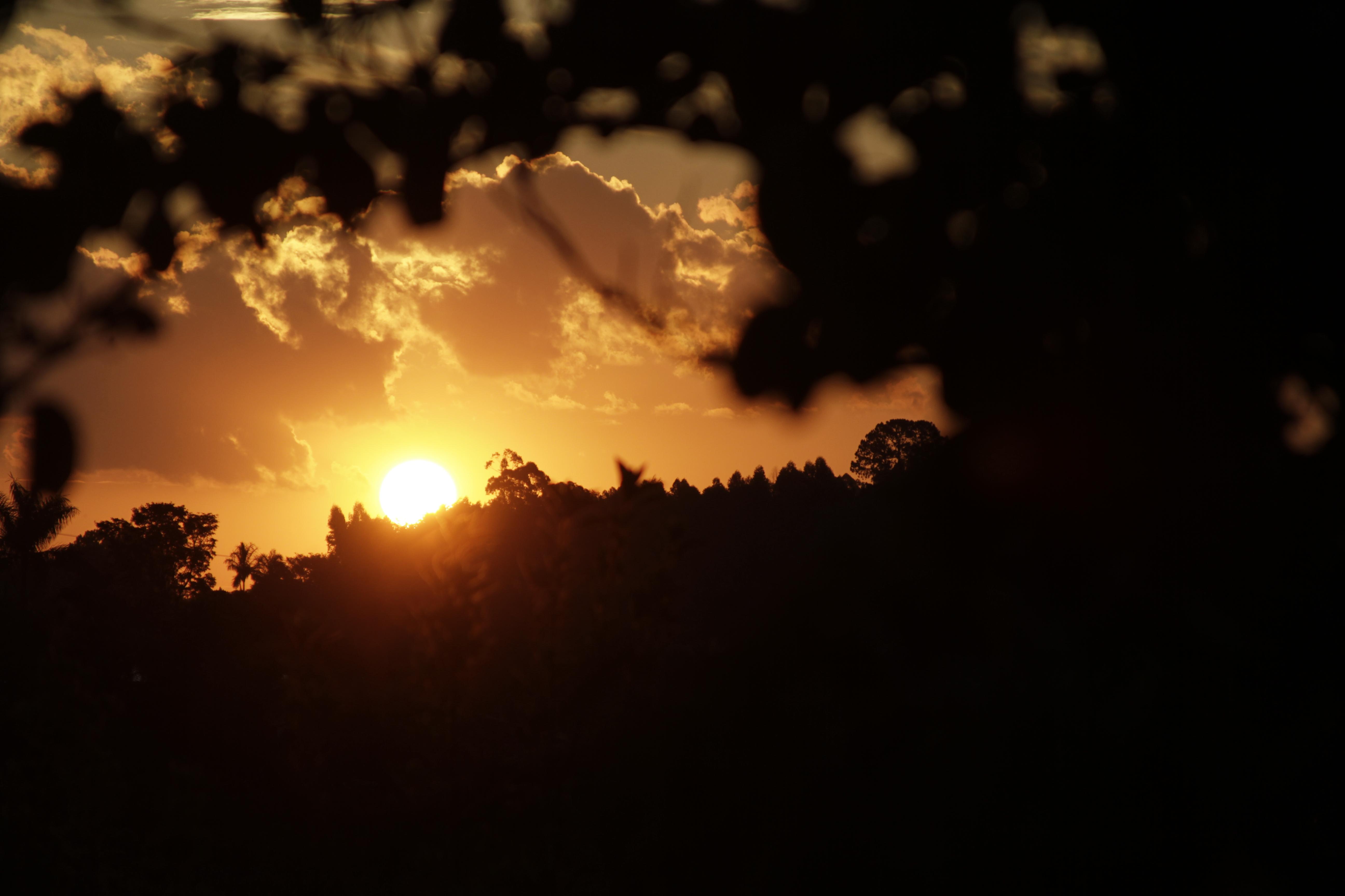 Série Sobre o Sol