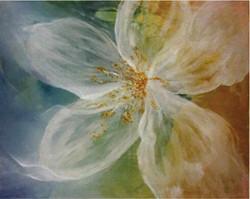 ''Primavera''
