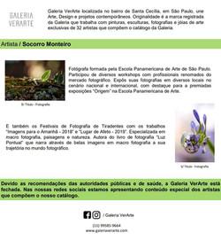 Socorro Monteiro