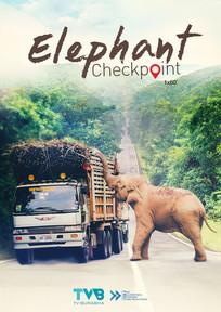 Elephant Checkpoint