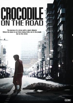 Crocodile on the Road (2018)