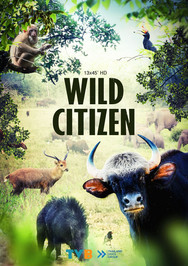 Wild Citizen