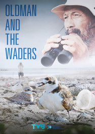 Oldman and the Waders