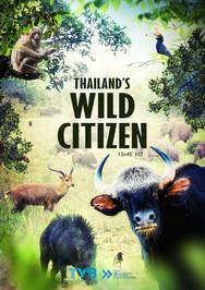 Thailand's Wild Citizen