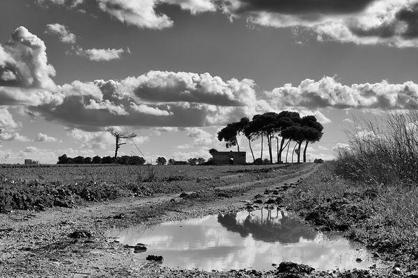 Paul Boerderij Italie.jpg