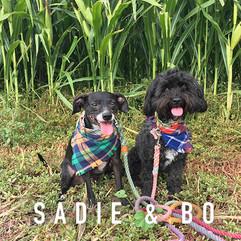 Sadie & Bo