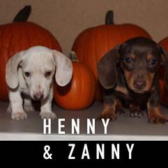 Henny & Zanny