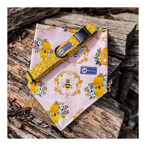 Honeybee collar + Bandana Set