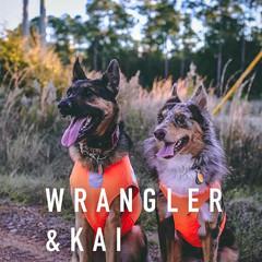 Wrangler & Kai