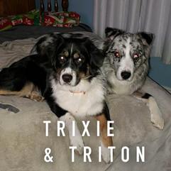 Trixie & Triton