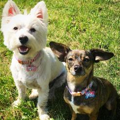 Ryder & Lilly